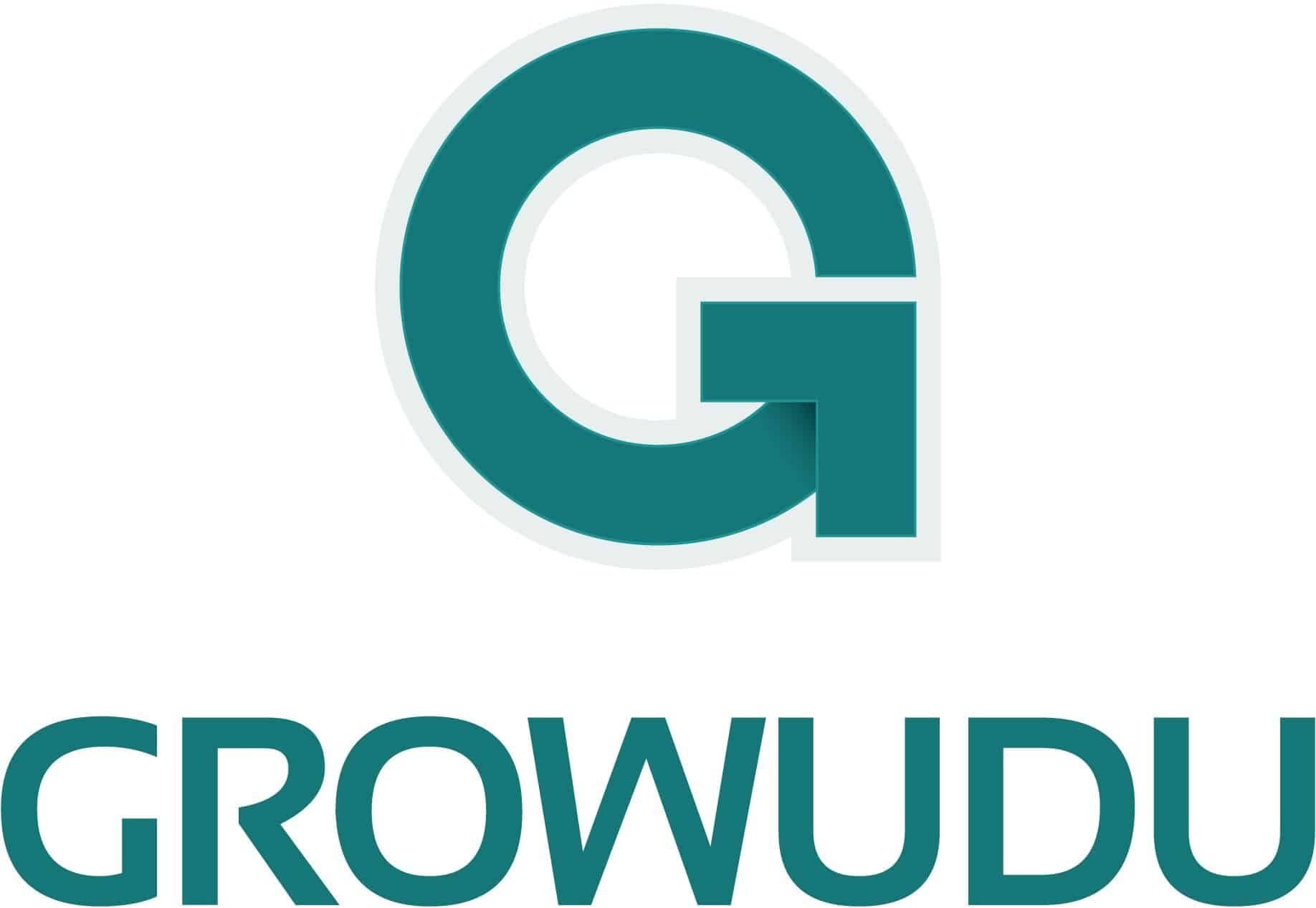 Online Marketing Beratung | Growudu